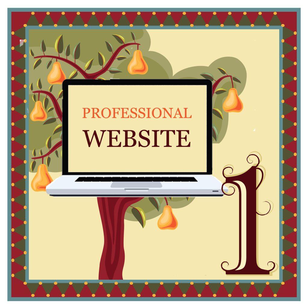Day 1 - Professional Webste