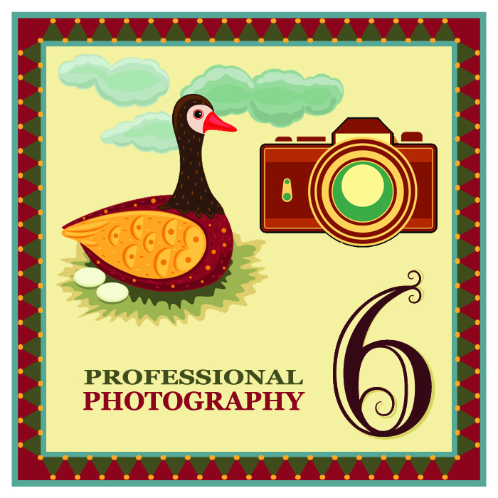 """On the sixth day of Christmas my web strategist said to me - """"Professional photography is important. Invest in some high quality pictures of yourself and your products."""""""