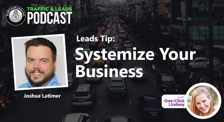 Traffic and Leads Podcast: Systemize Your Business