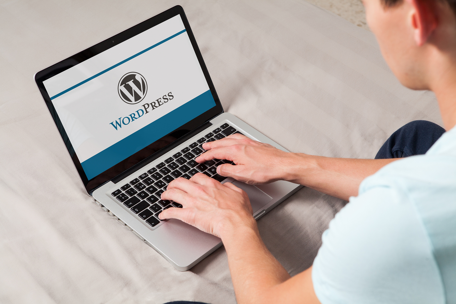 WordPress Experience
